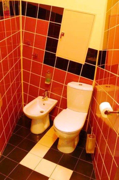 цветовое решение для туалета