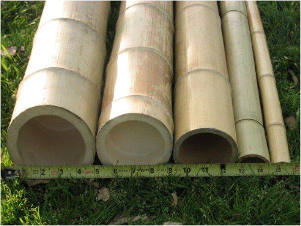 бамбук - отличный материал для декорирования