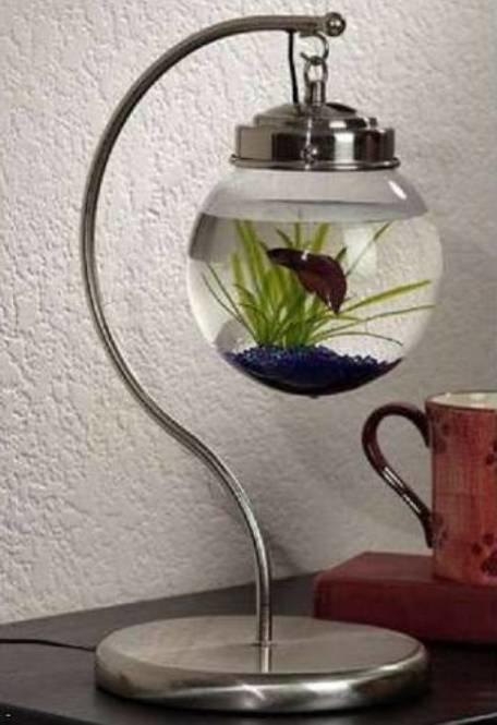 настольный мини вариант аквариума